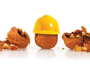 Brazil: nuts about safety