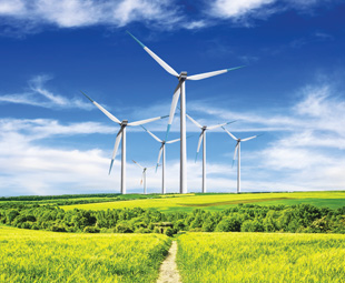Renewable, yes – but is it environmentally friendly?
