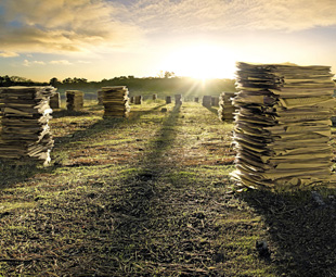 A new waste management plan is currently under discussion, –which could be positive for the country, but not necessarily for industry.