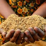 Boosting food security research