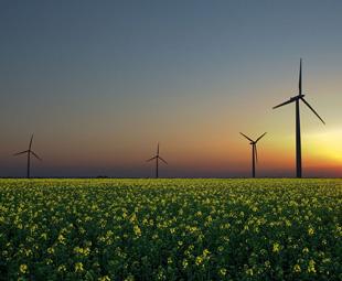 UN study shows Africa's renewable strengths