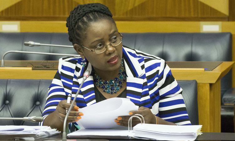 Energy minister