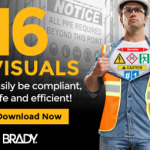 Brady visual web