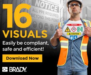 Brady visual web